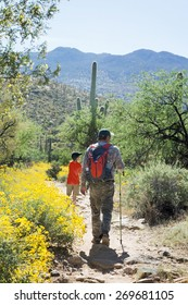 Father and son are traveling on foot through the Sonoran Desert. Saguaro National Park, Arizona, USA