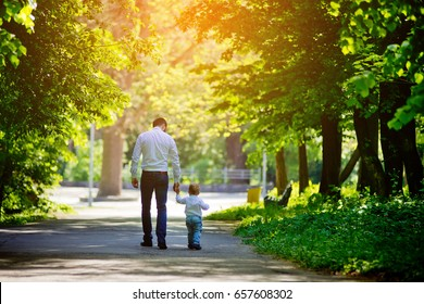 Father and son are walking along the alley in the park holding hands. View from the back. Father's Day.