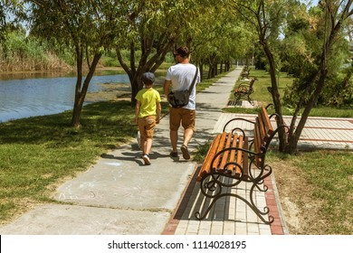 Father and son are walking along avenue in park with dog. View from back. Father's Day. Father with son and dog on a walk in the city park on sunny summer day. Family walking with dog in park