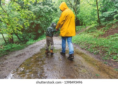 Father and son walking in the forest on a rainy day