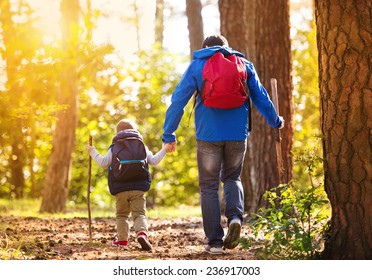 Father and son walking in forest at sunset