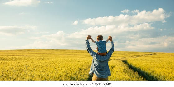 father and son in wheat field, child sitting on his fathers shoulders