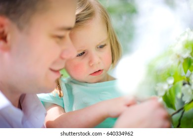 father together with the little daughter consider the blossoming trees