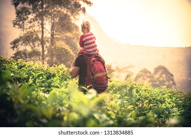 Father traveler holding child daughter on tea plantation fields looking beautiful sunset scenery on horizon during vacation concept travel lifestyle