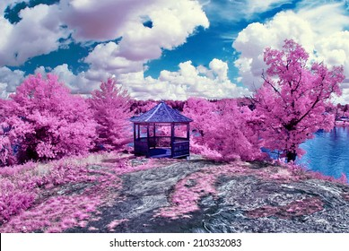 Faux Spring - Photographed with a 665nm infrared converted camera, this image depicts a magical spring like scene.