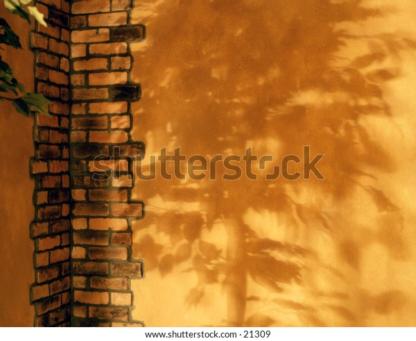 A faux wall with the shadow of a large plant.