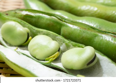 Fava beans (other names: broad beans, Windsor beans, horse beans)