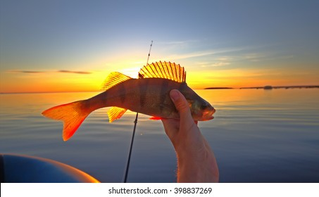 Favorite male leisure. Sunset lake, perch fishing with boat and rod, evening bite. Fishing at sunset key to peace of mind and good mood