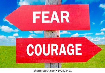 Fear and Courage way choice showing strategy change or dilemmas