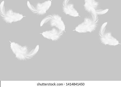 羽の画像写真素材ベクター画像 Shutterstock