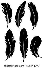 Feather set. Raster version