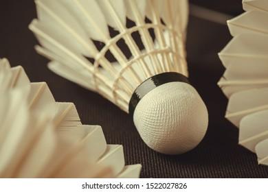 Feather shuttlecock. Badminton shuttlecock. Macro of a feather shuttlecock. Design of a shuttlecock. Badminton accessories. Sports equipment.