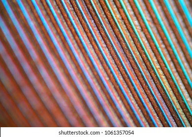 feather texture under microscope - 100x