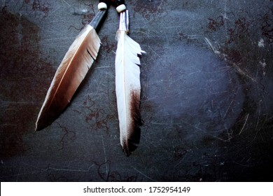 Feathers of a medicine wheel - a symbolic concept of wellbeing of body and mind as per the Native American tribal beliefs.