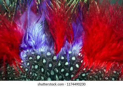 Feathers on a carnival mask