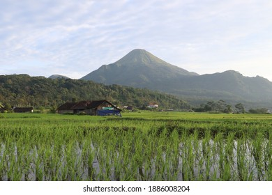 February 28, 2020, this is the penangggungan mountain that was successfully captured in a photo in 2020 in Trawas, East Java, Indonesia - Shutterstock ID 1886008204