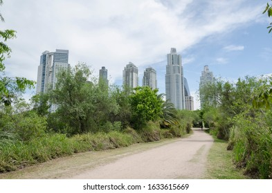 Federal Capital, Buenos Aires / Argentina; Nov 8, 2015: footpath of the Costanera Sur ecological reserve, in the background the modern buildings of Puerto Madero