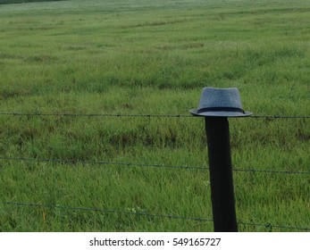 Fedora on a fence post