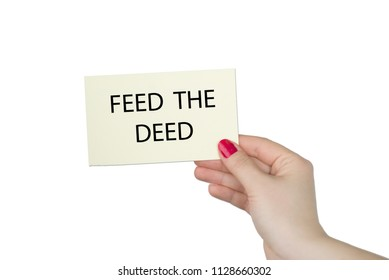 FEED THE DEED message on a yellow card hold by a woman hand, business concept image with soft focus background