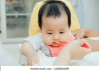 feeding 6 months asian baby girl on high chair. mom feeds blend food to her daughter.Traditional Weaning