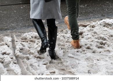 Feeds in wet snow on the street, dirty snow, walking through slush