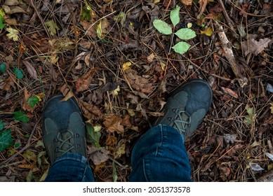 Pieds en bottes sur le sol de l'automne, avec feuilles et bâtons. Dans les bois. Promenade d'automne près de la forêt. Gros plan.