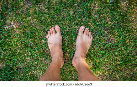Feet in grass on meadow/ summer relax concept