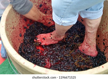 Feet and hand stomping grapes in competition