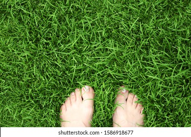 Feet on the fresh green grass. Relax and freedom. Unity with nature. Photo background