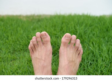 The feet on the green grass background