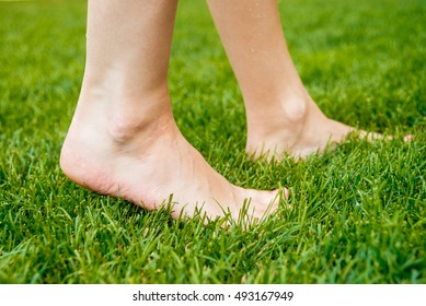 feet on the green grass. natural background