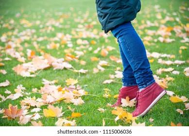 Feet sneakers walking on fall leaves