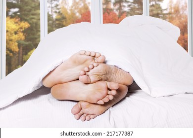 Feet of two couple sleeping on bed with autumn background on the window