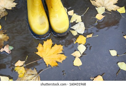 Feet in yellow rubber boots standing in a puddle, where fallen leaves float