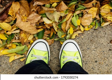 Feet with yellow sneakers shoes standing on fallen autumn leaves.