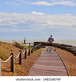 Felixstowe, Suffolk, UK - 18 August 2019: Bright summer Sunday afternoon. Man walking two dogs on leads around Landguard Point nature reserve.