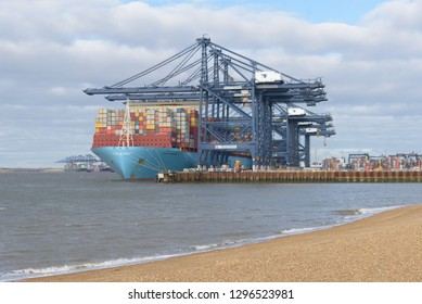 FELIXSTOWE, UNITED KINGDOM - JAN 27, 2019: Maersk Line container ship Milan Maersk docked at Felixstowe port in Suffolk with other ships in background and shingle beach in foreground