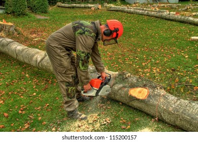 felling of trees, lumberjack