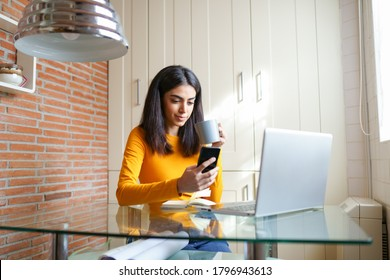 Female architect working at home with a laptop and blueprints. Persian woman. Persian woman with a coffee mug.