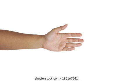 Female arm including hand fingers and thumb, the part of body isolated on white background with clipping path