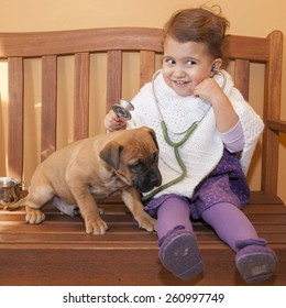 Female baby vet examining puppy. sitting on a wooden bench