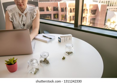 Female Cannabis Entrepreneur working on Marketing for Marijuana Business in Bright, Soft Lit Office