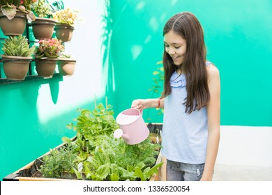 Female child smiling while giving nourishment to plants in garden