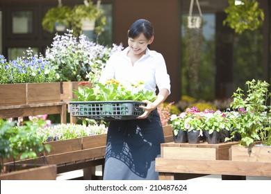 The female clerk in the flower shop