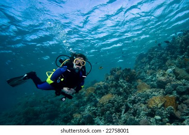Female diver floating over a beautiful coral reef in the Red Sea, Egypt