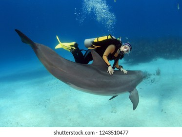 Female diver posing with a dolphin