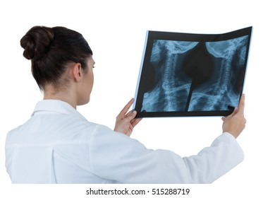 Female doctor checking x-ray report against white background