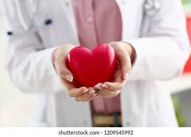 Female doctor hold in arms and cover red toy heart closeup. Cardio therapeutist student education CPR 911 life save physician make cardiac physical pulse rate measure arrhythmia lifestyle