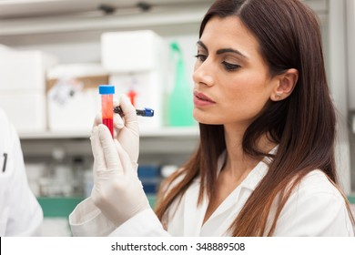 Female doctor writing on a blood sample