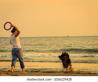 female dog owner with his long-haired German Shepherd trains at sea beach